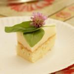 Jogurtowiec brzoskwiniowy