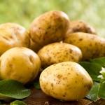 Typy kulinarne ziemniaków, czyli który do czego będzie najlepszy